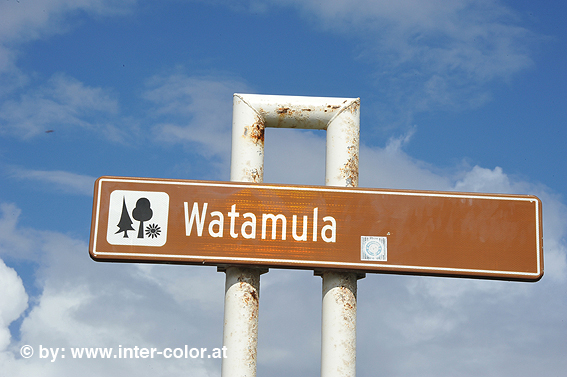 duiken watamula curacao